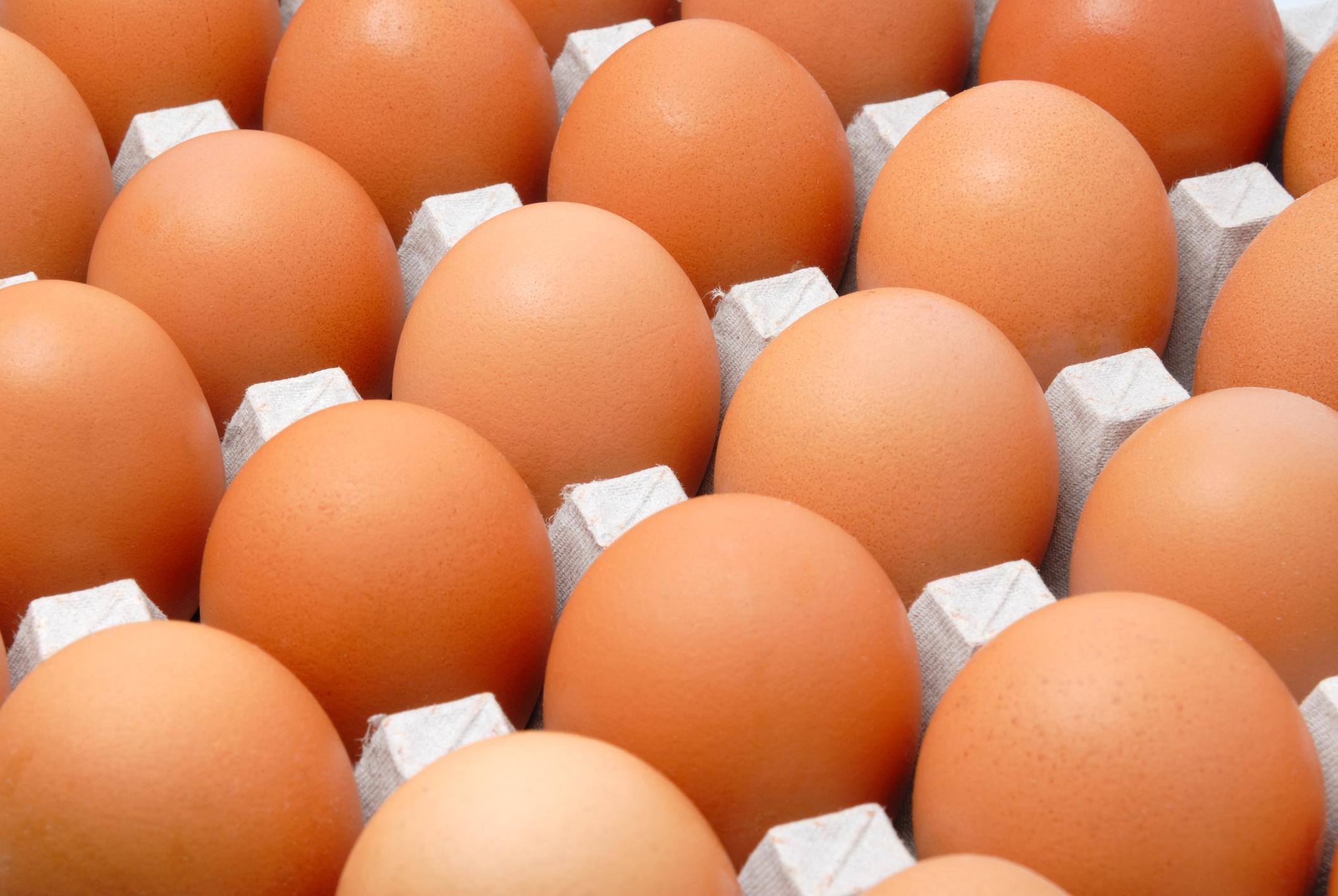 Piden 1.500 huevos y les traen 15.000