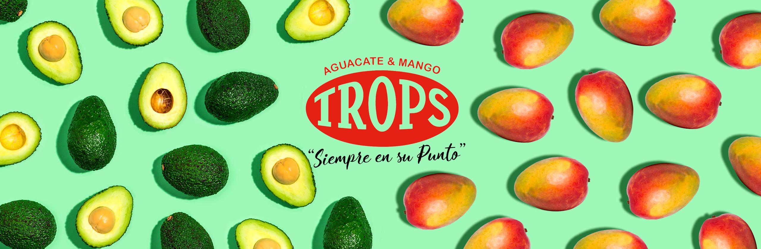 Comienza la temporada del mango Trops, el mango de Málaga 3